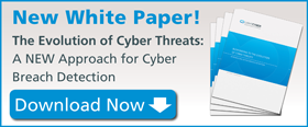 A new approach for cyber breach detection