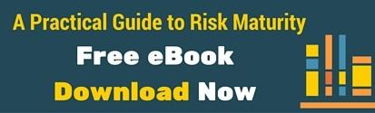 Practical Guide to Risk Maturity