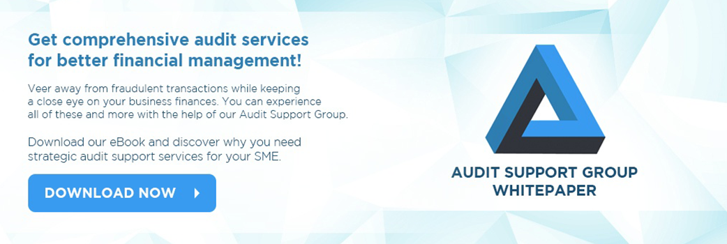 Accounting Audit Support