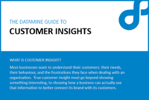 datamine guide to customer insights