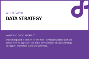 data strategy whitepaper datamine