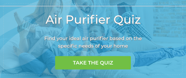 Take Our Air Purifier Quiz