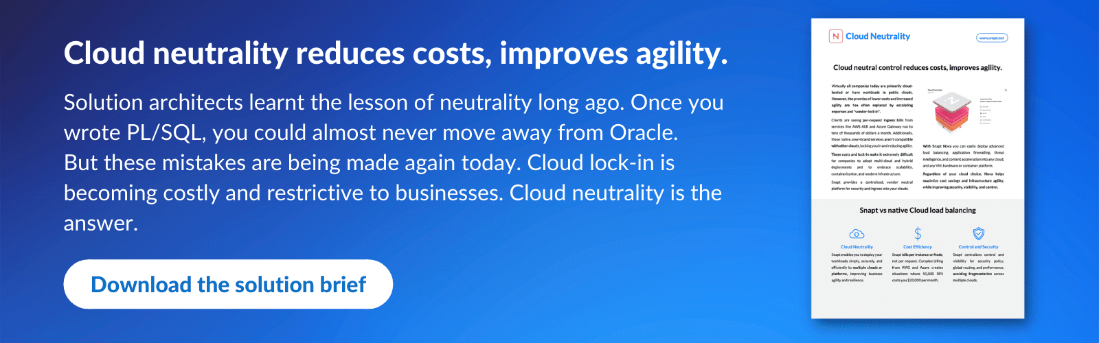 Download Cloud Neutrality solution brief