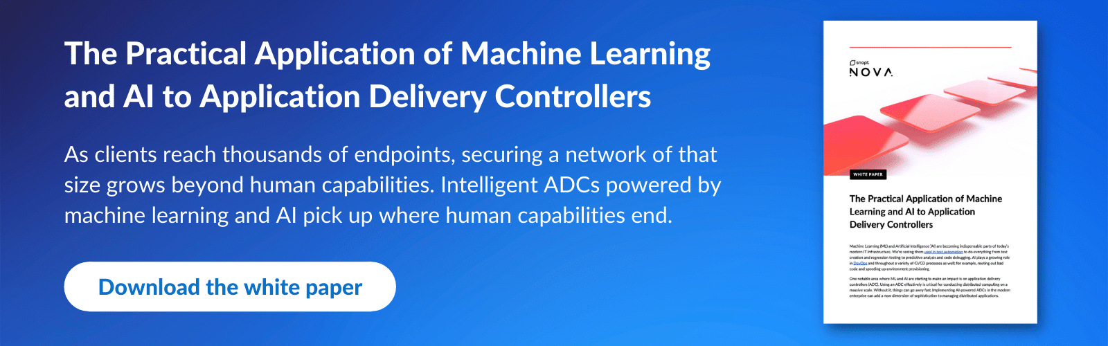 Download white paper: The Practical Application of Machine Learning and AI to Application Delivery Controllers