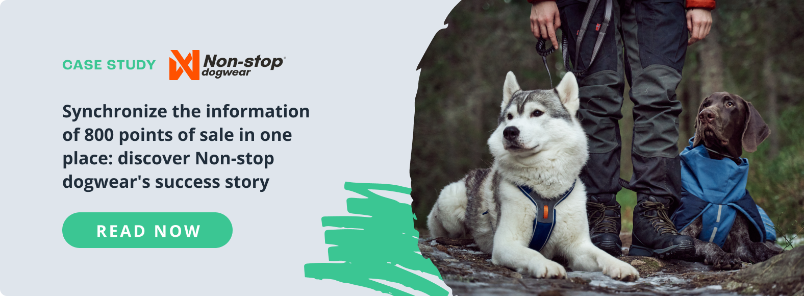Case study Non-stop dogwear & Sales Layer