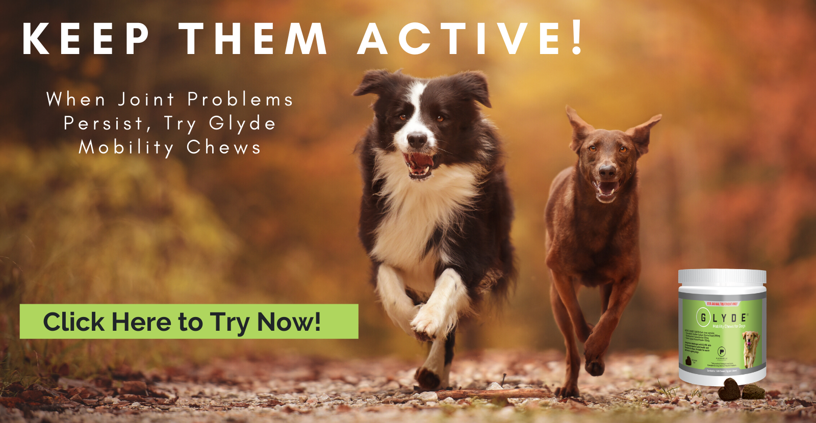 Try Glyde Mobility Chews Now!