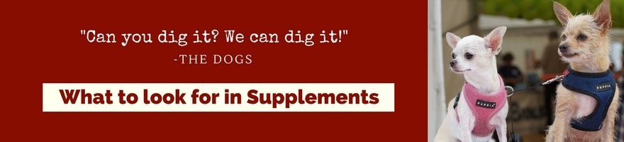 Can you dig it? Here's what to Look for in Supplements