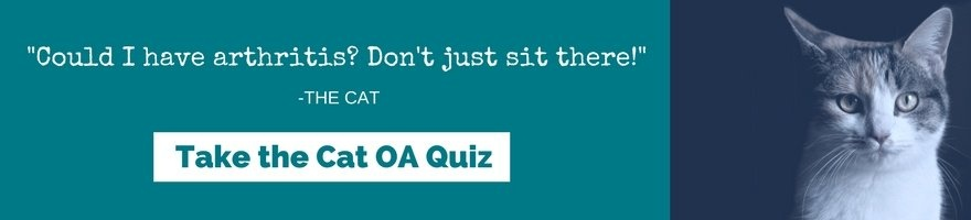 Could I have arthritis? Don't Just sit there! Take the Cat OA Quiz