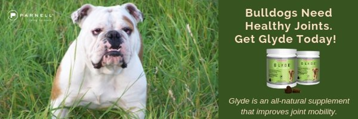 Bulldogs Need Healthy Joints!