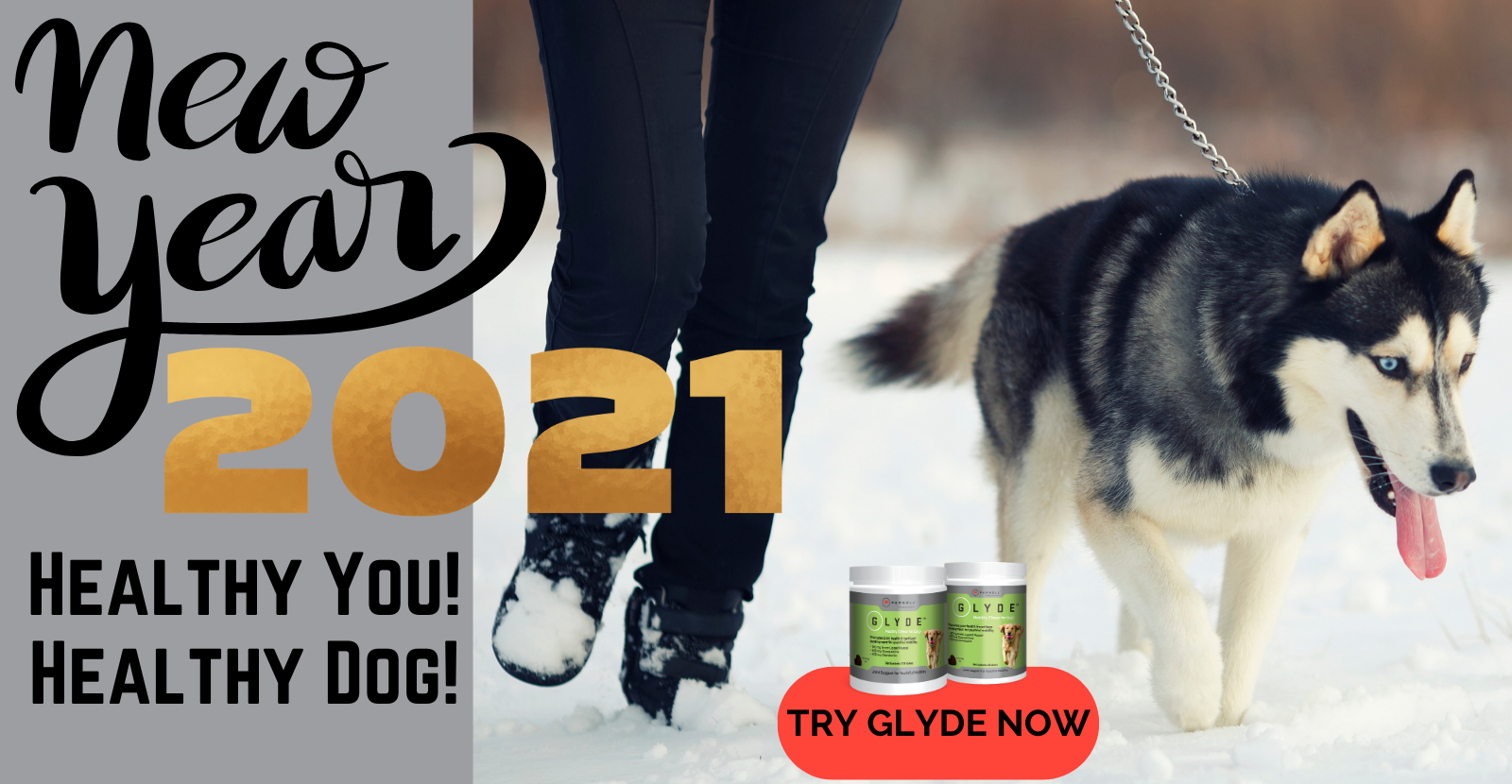 Healthy You! Healthy Dog! For 2021 Try Glyde Now