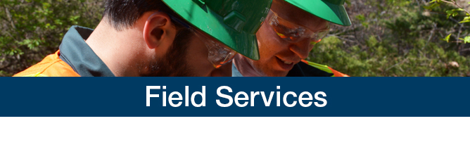 field-services