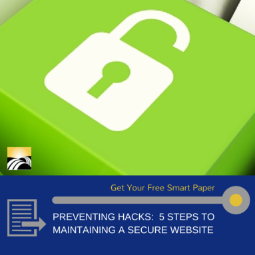 Prevent website from being hacked