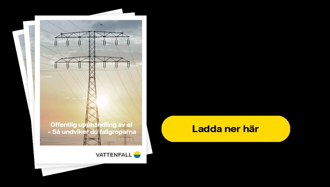 Ladda ner vårt whitepaper om hur du undviker fallgroparna i offentlig upphandlig av el