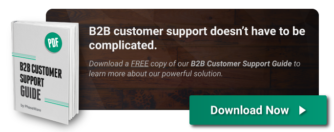 Download the B2B Customer Support Guide