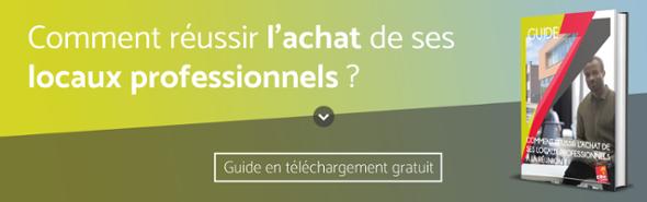 Guide Achat locaux professionnels