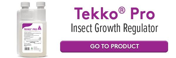 Tekko Pro Online