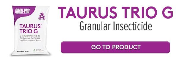 Taurus Trio G Online