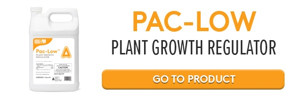 Go to PAC-LOW online