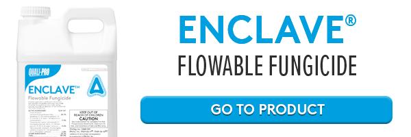Enclave Product Online