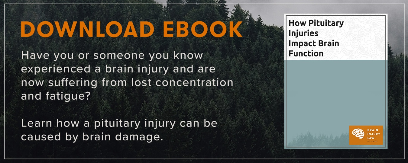 ebook brain injury