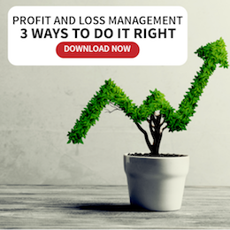 Profit and Loss Management 3 Ways to Do it Right | Infinit-O