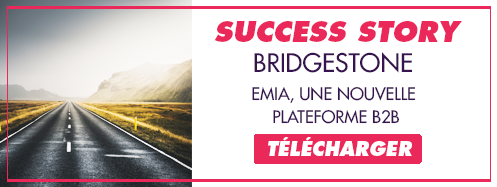 Téléchargez la success story Bridgestone