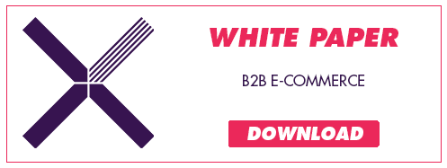 Download B2B E-commerce White paper