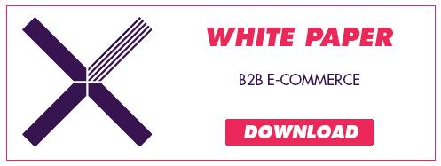 Download B2B E-commerce White paper