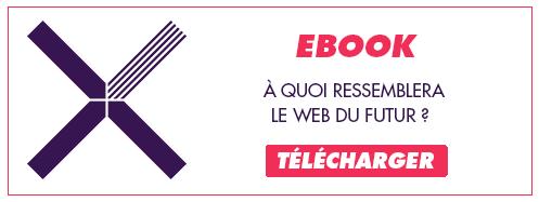 Télécharger l'Ebook à quoi ressemblera le web du futur ?