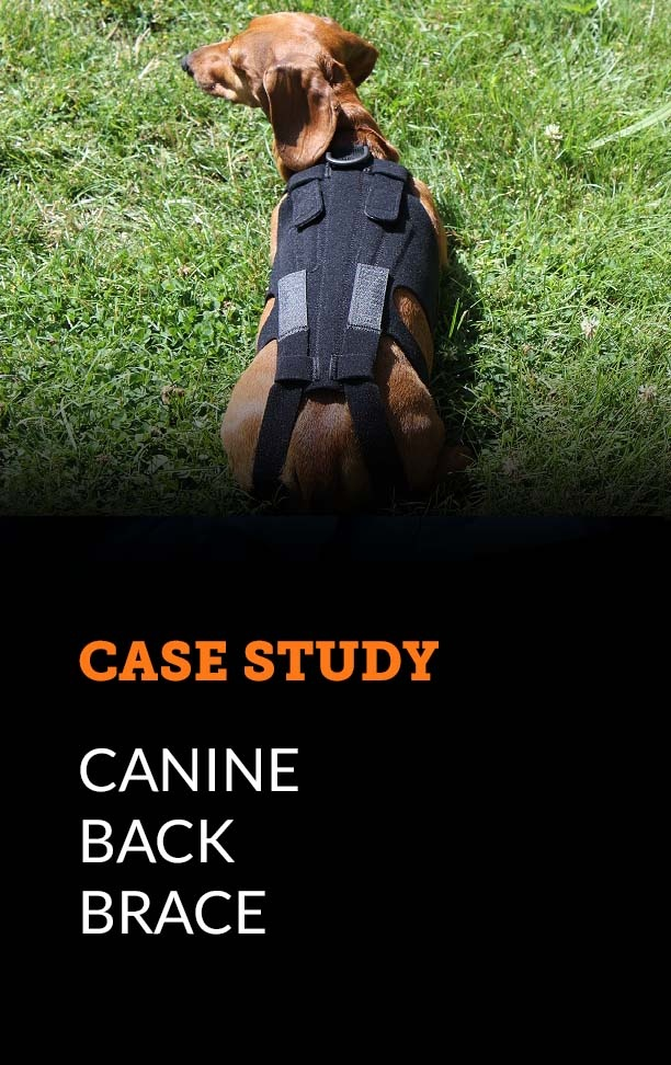 Case Study - Canine Back Brace