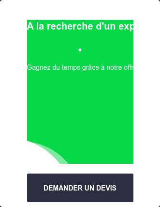 A la recherche d'un expert-comptable à Saint-Denis ?  •  C'est tout compris et  sans engagement DEMANDER UN DEVIS  Membre de l'Ordre des  Experts-Comptables