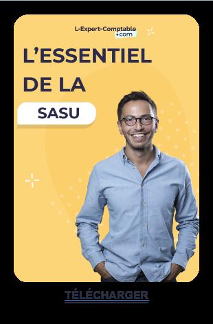Tout savoir sur la SASU ! Télécharger  gratuitement