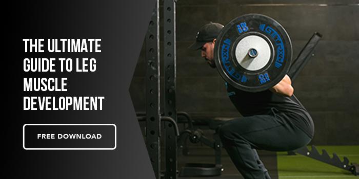 Leg Muscle Development Guide