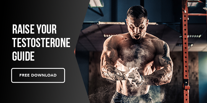 Raise Your Testosterone Guide | Mind Pump