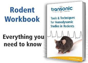 Download the Rodent Workbook