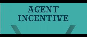 Realtor Incentive