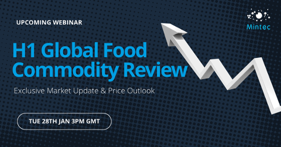 H1 Global Commodity Review Webinar