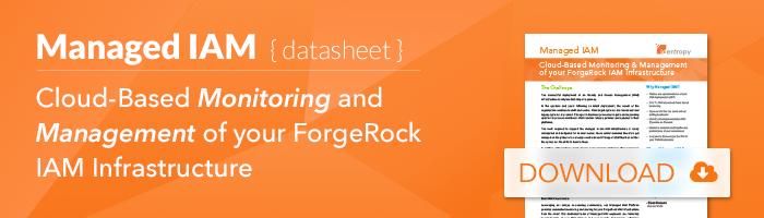 managed_iam_forgerock_datasheet