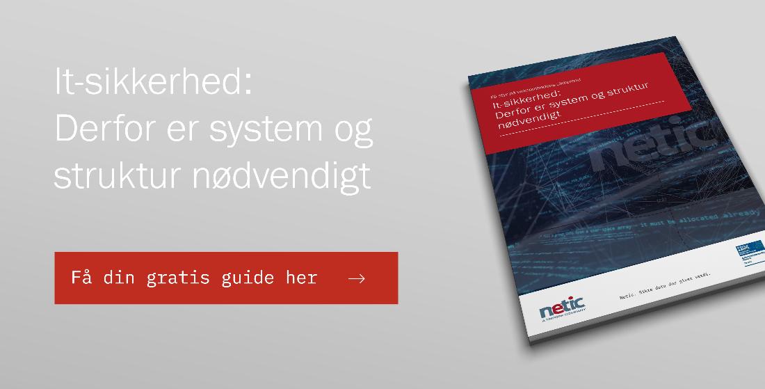 Netic whitepaper: It sikkerhed - Derfor er system og struktur nødvendigt