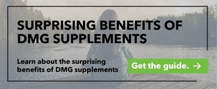 DMG Supplements Guide