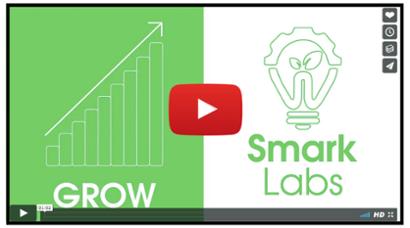SmarkLabs Video