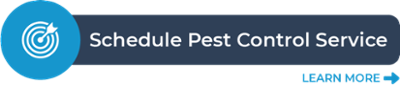 Schedule a pest control service now!