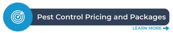 Click to view our pest control packages and their prices!