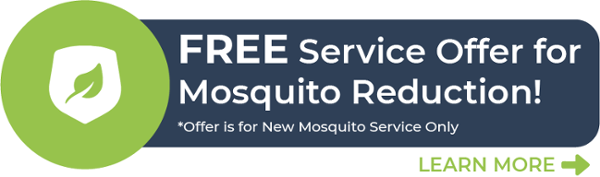Free Service Offer for Mosquito Reduction CTA