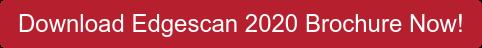 Download Edgescan 2020 Brochure Now!