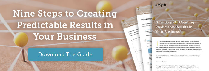 Nine Steps to Creating Predictable Results in Your Business, Download The Guide