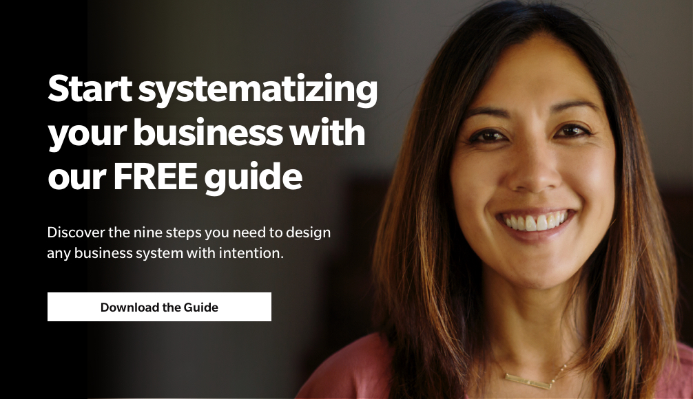 systematize your business systems guide