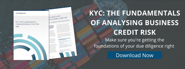 KYC Guide - download now