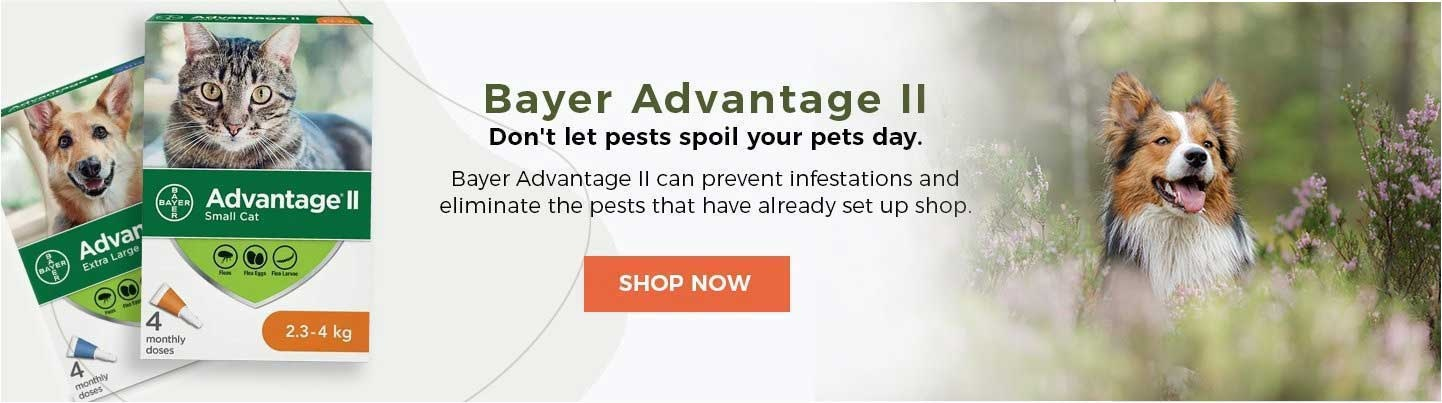 Bayer Advantage II