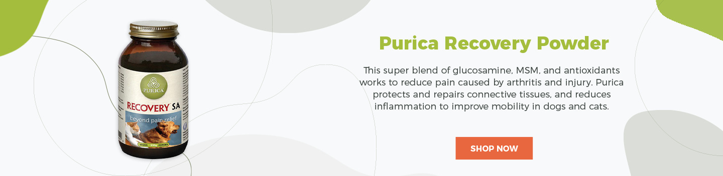 Purica Recovery Powder